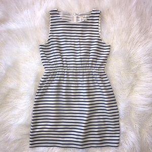 J. Crew Navy Blue Striped Dress